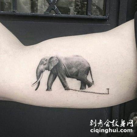现实的束缚,手臂写实大象纹身图案图片