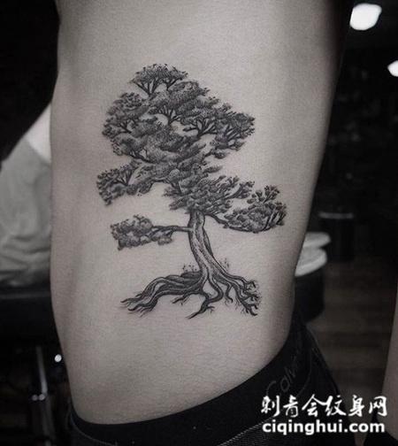 常青之树,侧腰松树个性纹身