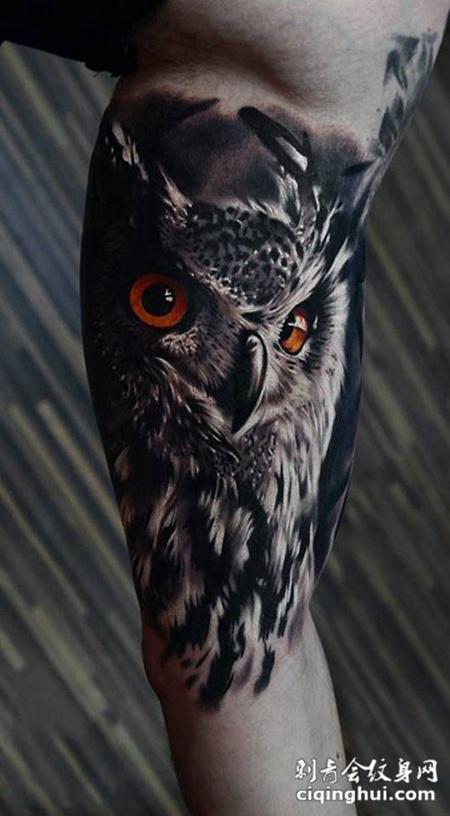 深夜中的监视者,手臂写实风猫头鹰纹身