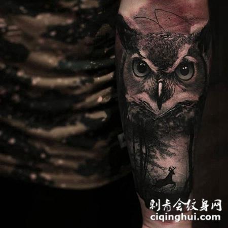自然守护者,手臂猫头鹰个性纹身图案