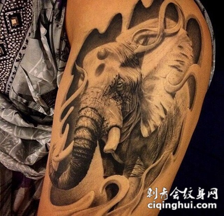 手臂写实大象素描纹身图案图片