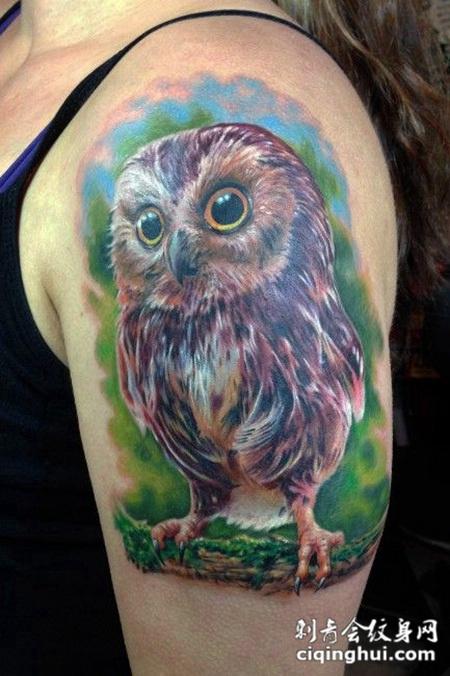 手臂可爱猫头鹰刺青图案