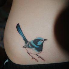 纹身小图案女生鸟图片