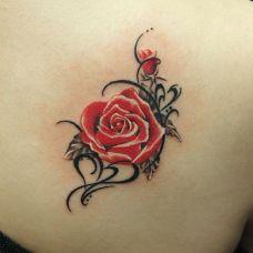 玫瑰花纹身图案大全推荐