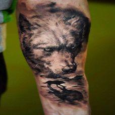 手臂狼纹身图片个性图案