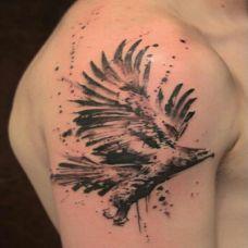 手臂鹰纹身图案素材