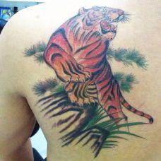 肩部个性上山虎纹身图案