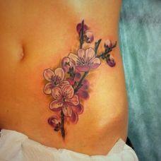 女人小肚子纹身图片合辑