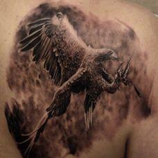 帅气的肩膀鹰纹身图片