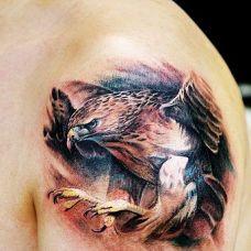 帅气的手臂老鹰纹身图案