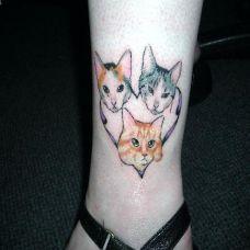 纹身猫咪图案个性图片