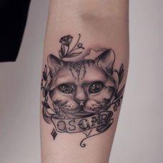 手臂可爱的小猫丝带纹身图案