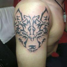 狼图腾纹身图片图案大全