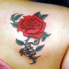 玫瑰纹身图案精美图片