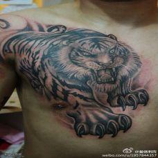 手臂肩膀老虎纹身图案大全