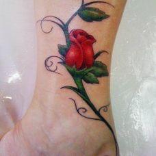 脚踝精美的玫瑰花纹身图片