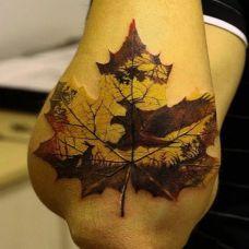 自然的残酷,手臂枫叶图腾纹身