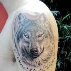 个性男士经典狼头纹身图案