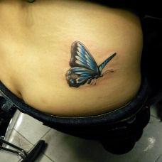 腰部逼真蝴蝶纹身图案作品