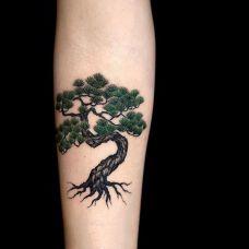郁郁青葱,手臂松树彩绘纹身