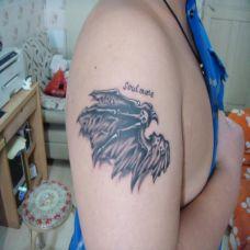 个性手臂翅膀纹身图片大全