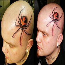 d蜘蛛手臂纹身图案大全