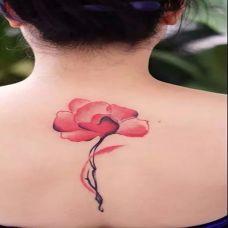 唯美浪漫彩色纹身图片