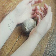 漂亮女性手臂小鸟英文纹身图案
