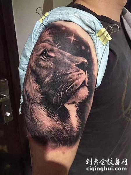 仰望星空,手臂写实风格狮子纹身(图片编号:23572)