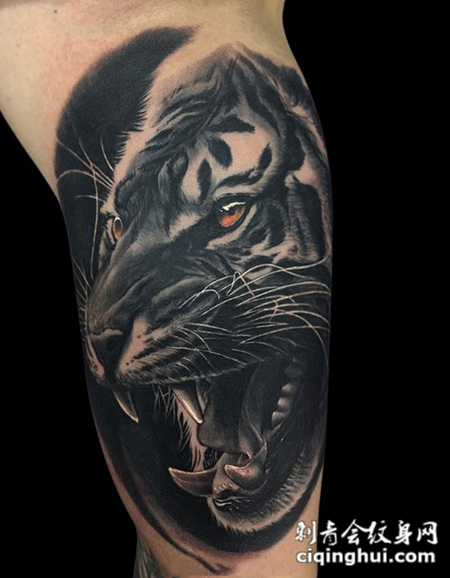 骇人咆哮,手臂黑灰写实老虎纹身