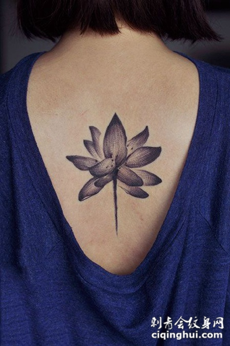 莲开并蒂,后背莲花纹身图案
