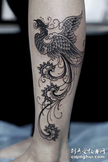 凤游九天,腿部个性凤凰纹身(图片编号:24195)_最新