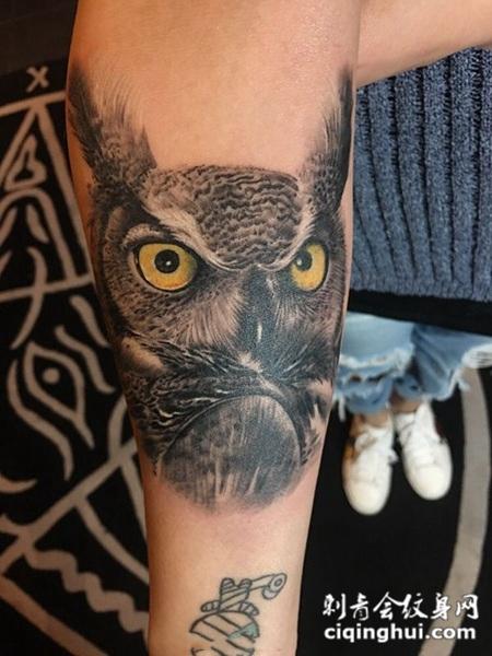 夜空使者,手臂猫头鹰写实纹身