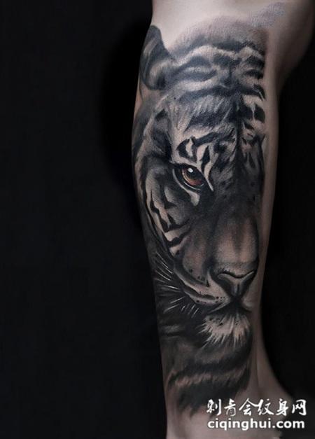 首页 纹身图案 动物 老虎