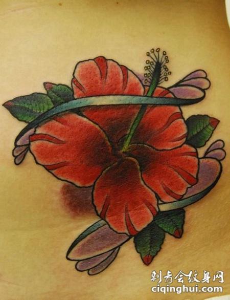 背部木槿花纹身图案