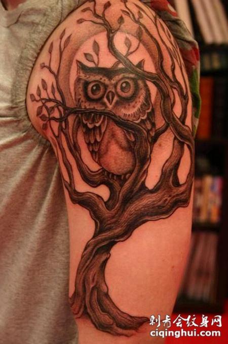 大臂上的枯树猫头鹰纹身图案