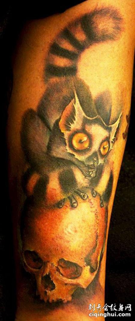 大臂上踩着骷髅头的猫纹身图案