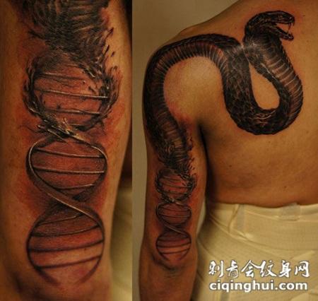 后背上的眼镜蛇纹身图案