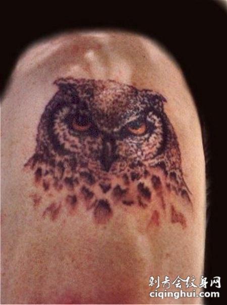 大臂上的猫头鹰头纹身图案