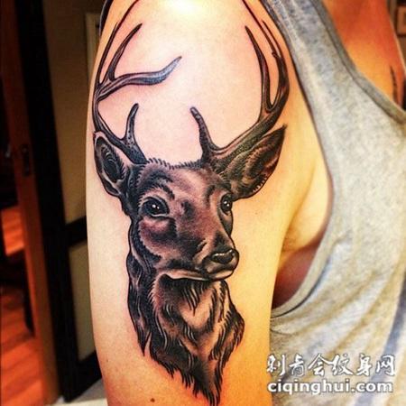大臂上的小鹿纹身图案图片