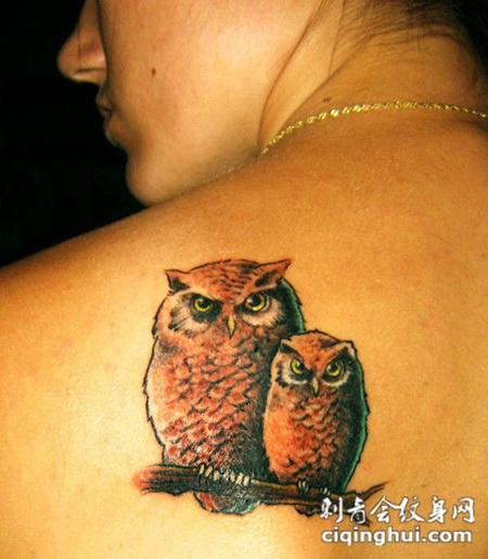 后背上的两只猫头鹰纹身图案