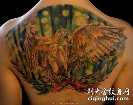 后背上的猫头鹰纹身图案