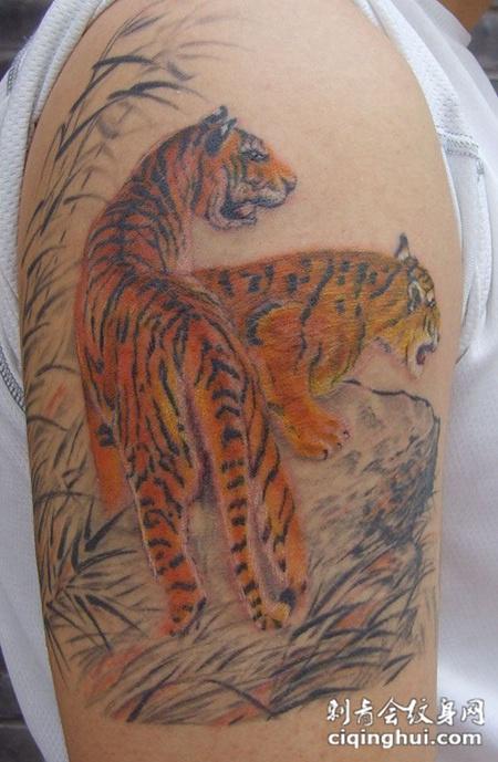 胳膊上的工笔画两只老虎纹身图片