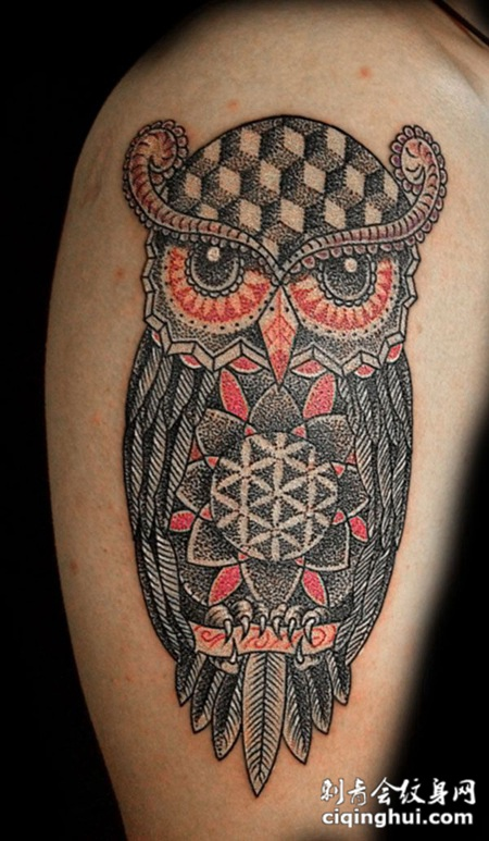 大臂上的猫头鹰的纹身图案