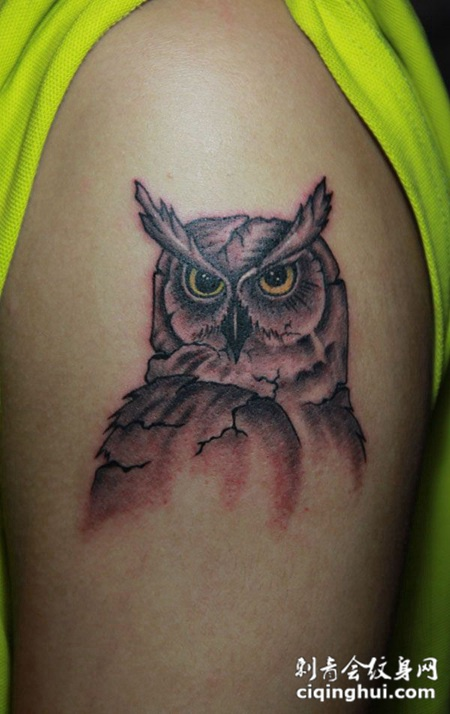 胳膊上的猫头鹰纹身