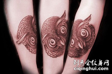 小臂上的猫头鹰纹身图案