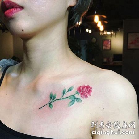 娇艳女人花,锁骨玫瑰花彩绘纹身(图片编号:39360)_花