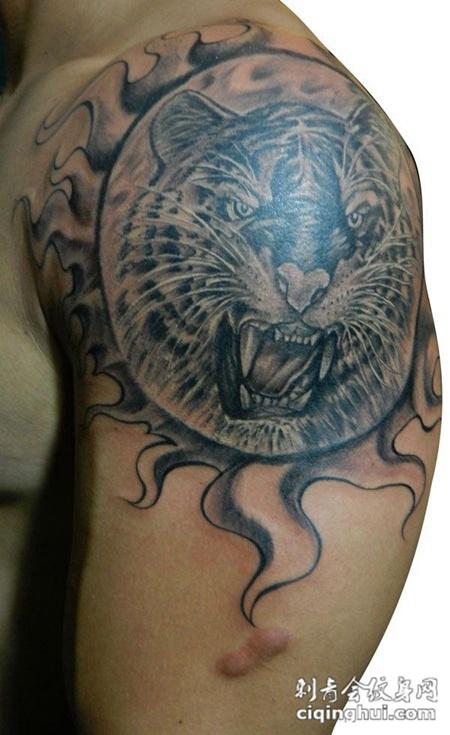 胳膊上的老虎纹身(图片编号:27857)_老虎 - 刺青会