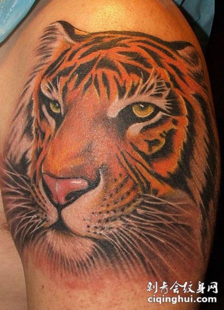 我想纹身纹个虎头在胸口,要彩色的需要多少钱