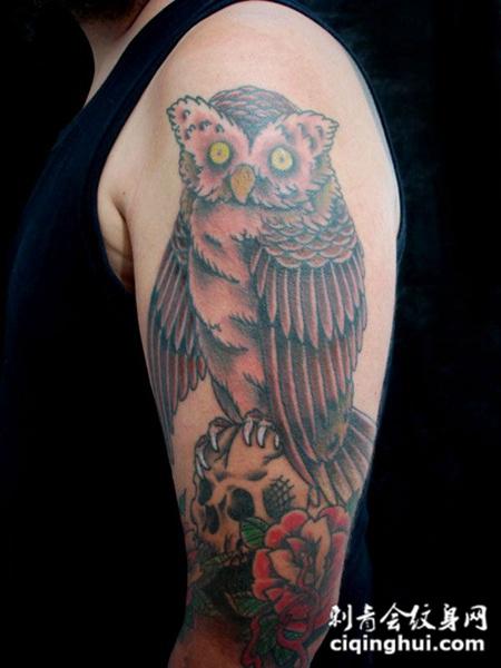 胳膊纹身:骷髅猫头鹰